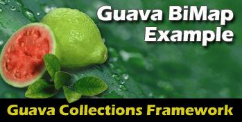 GuavaBiMap