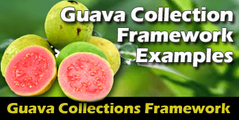 GuavaCollectionExamples