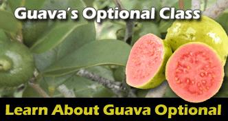 GuavaOptionalClass